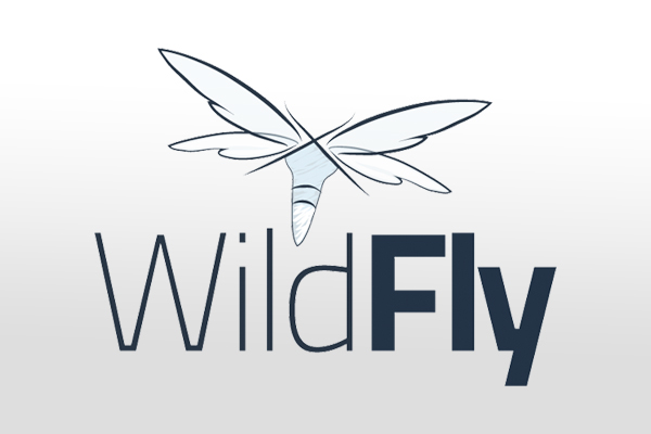 How to Install WildFly 14 on VM Instances and Docker